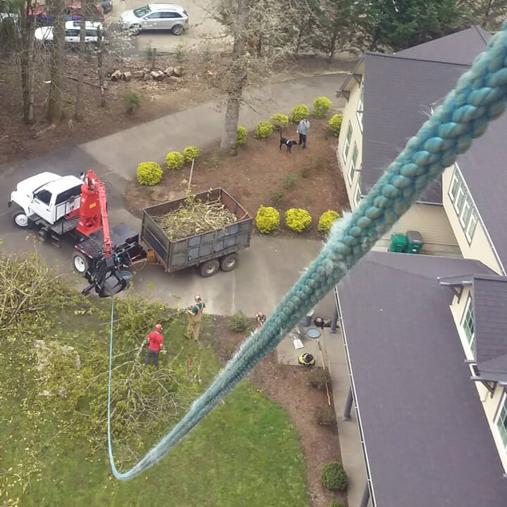 Tree Service - Grapple Truck