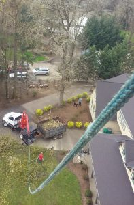 Tree Service - Grapple Truck